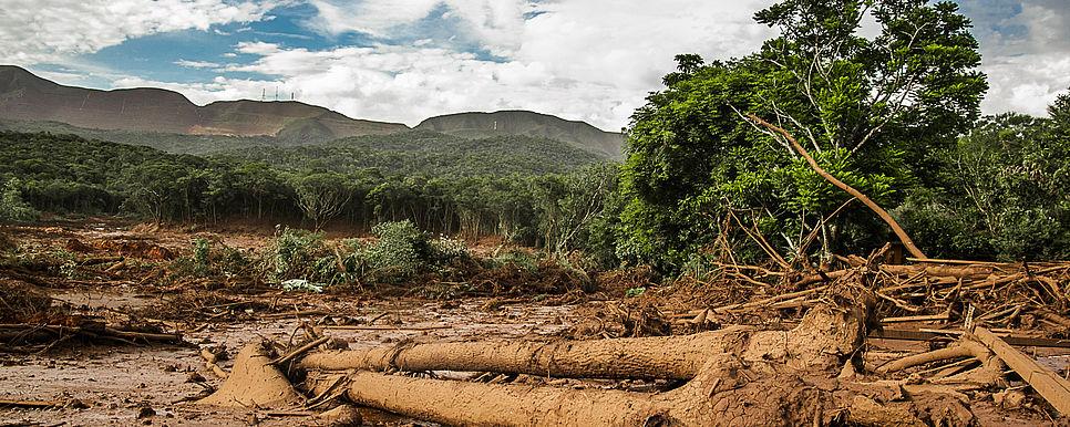 Nota do IPDMS sobre o crime ambiental e social cometido pela Vale em Brumadinho/MG